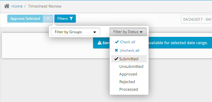 Timesheet Review Filters